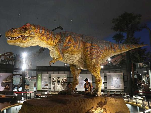 恐竜博物館 (20)