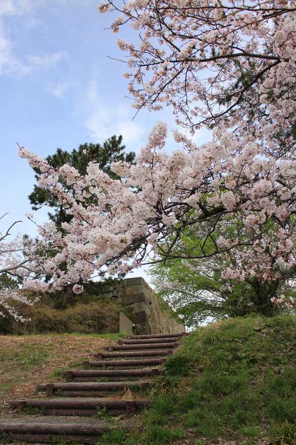 小松城跡 (2)
