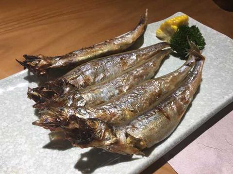 漁 (11)