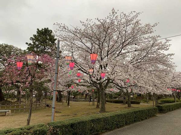 芦城公園 (2)