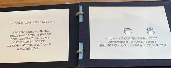 たまごのゆめ (16)