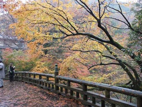 こおろぎ橋 (3)