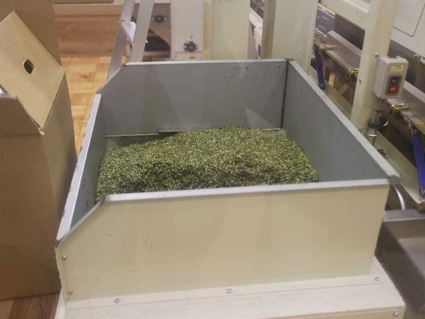 丸八製茶場 (5)