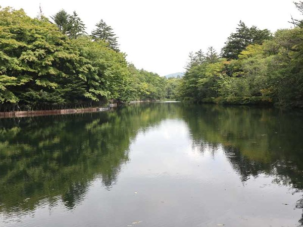 雲場池 (2)