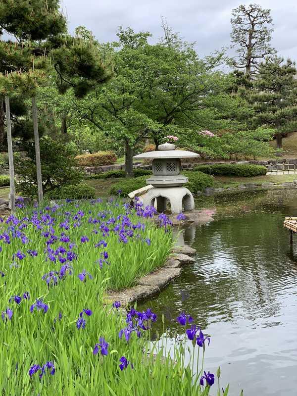 芦城公園 (15)