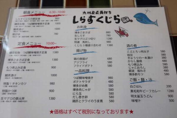 しらすくじら (7)