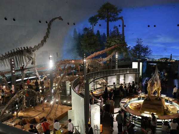 恐竜博物館 (25)