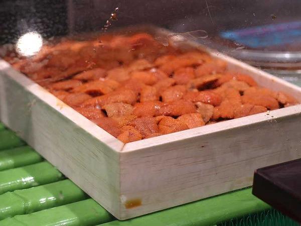 大和寿司 (9)