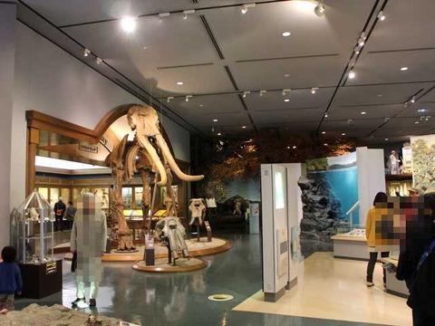 琵琶湖博物館 (8)