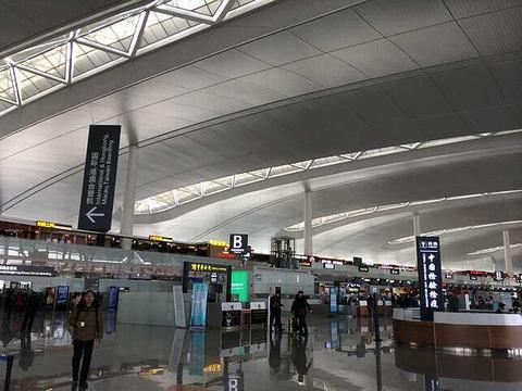南京空港 (2)