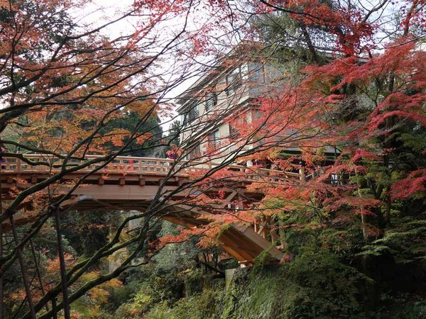 山中温泉 (9)
