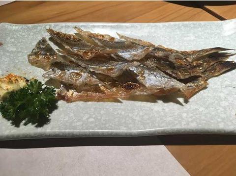漁 (8)