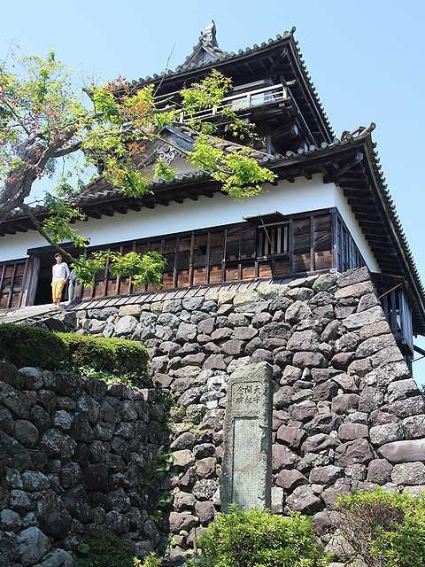 丸岡城 (4)