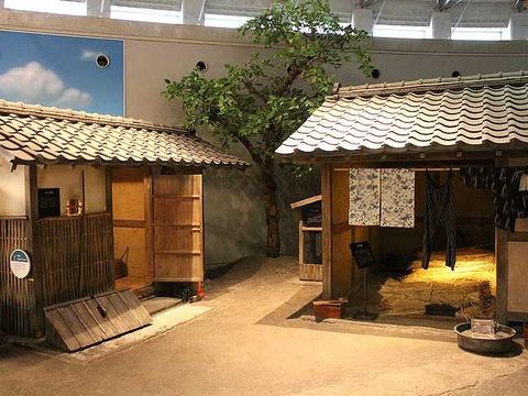 琵琶湖博物館 (24)