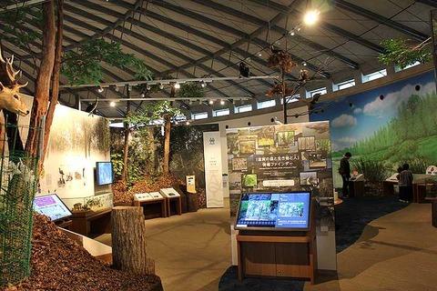 琵琶湖博物館 (22)