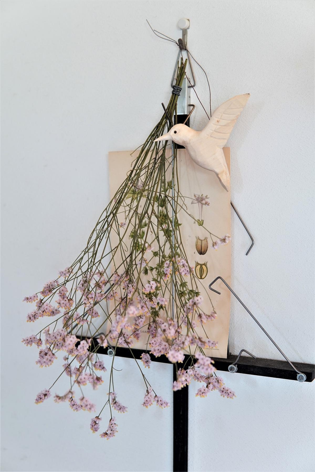 秋の花10