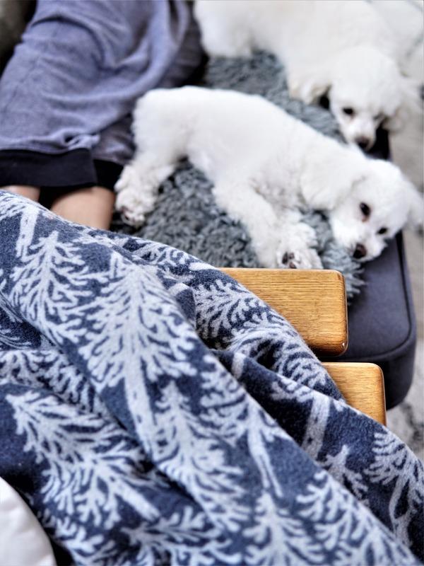 【楽天マラソン】開始2時間セール狙い品!愛犬家必見!経済的で厚型のペットシーツ!