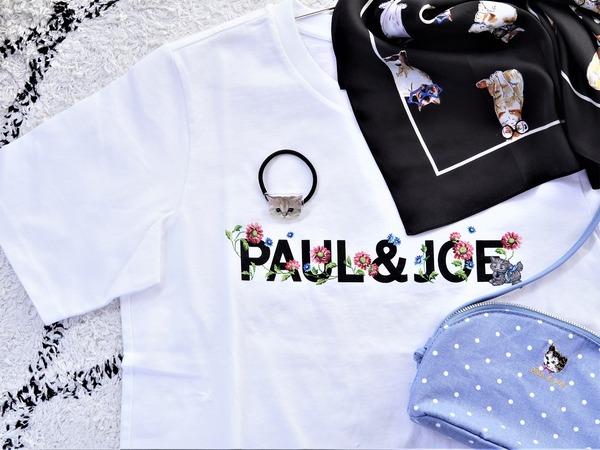 ポールジョー8