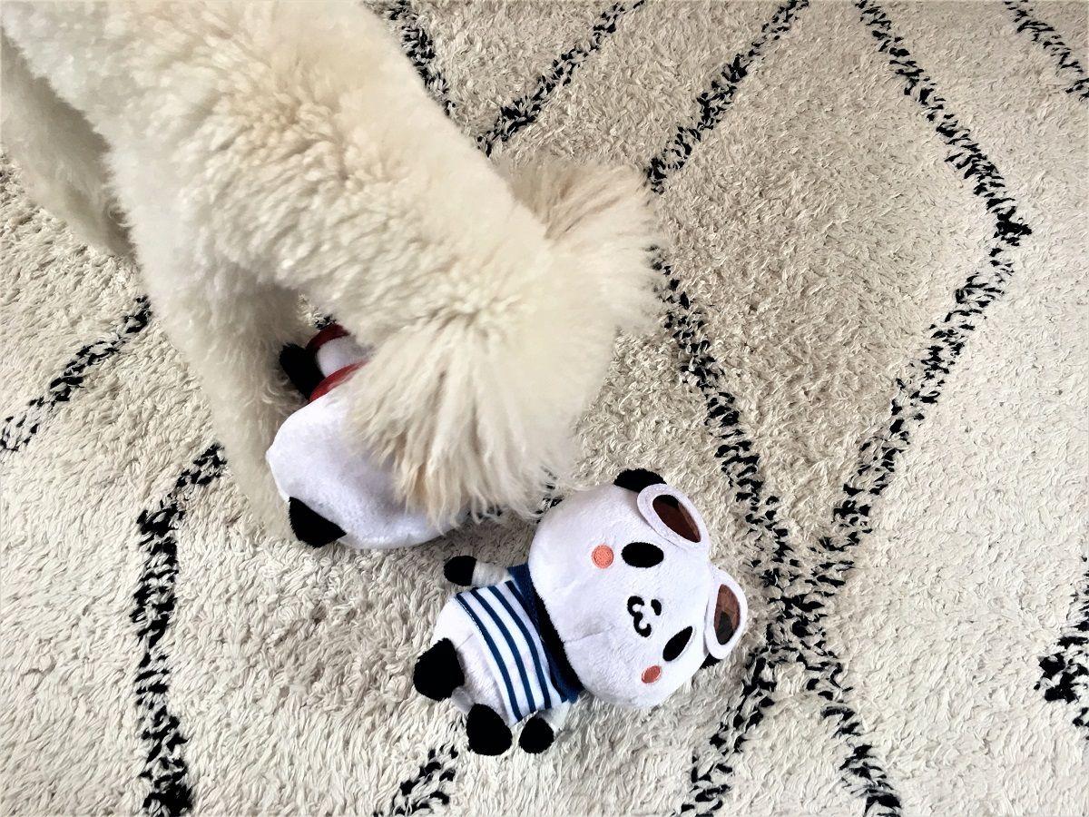 お買い物パンダ4
