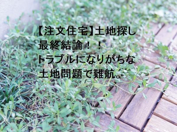 DSC06749_R - コピー - コピー (2)