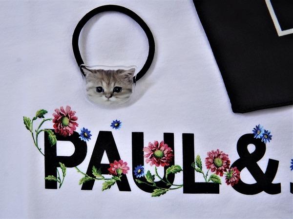 ポールジョー7