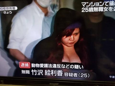 【画像あり】爆乳の女(25)が猫を虐待して逮捕される