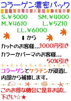 20159kora330