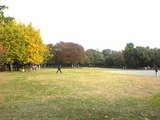 051123清澄公園