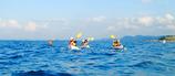 海洋大学カヤック講習