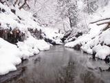 由良川 一ノツボの上流
