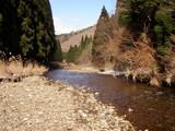 針畑川を歩く