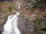 四ノ谷左俣の滝場