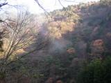 霧の残る由良川沿い