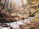 ナメ谷出合の上流