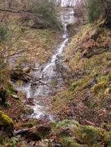 四ノ谷右俣の多段大滝