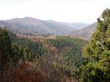 若丹国境から八ケ峰方面