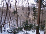 経ケ岳から三国岳