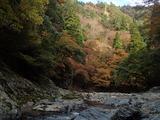 赤崎谷出合の上流