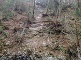 大谷出合下流のがけ崩れの跡