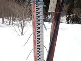 針金の曲がっているところまで積雪があった220cm