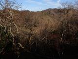 冬枯れの上谷上部