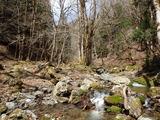 七瀬谷下流