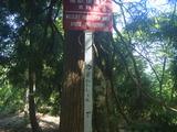 鳥獣保護区の看板への落書き