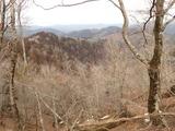 中山谷山山頂付近から北側