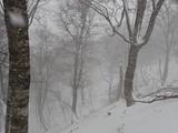 吹雪の中山神社裏尾根最高点
