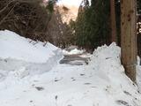 林道は生杉ゲートまで除雪されていた
