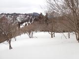 府大演習林南縁尾根分岐から西側天狗岳方面