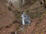 権蔵谷の唯一の滝 今日は長靴で登った