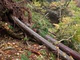 土砂崩れ カズラ谷出合・野田谷間 通過はかなり困難