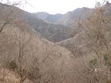 奥ノ谷山分岐からの下りから櫃倉谷